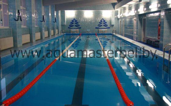 реконструкция бассейна 25 м, ПВХ плёнка, спортивное оборудование, разделительные дорожки